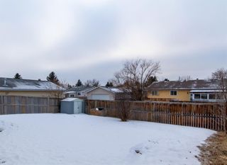Photo 32: 3807 49 Street NE in Calgary: Whitehorn Detached for sale : MLS®# A1066626