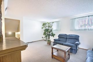 Photo 32: 140 Thames Close NW in Calgary: Thorncliffe Detached for sale : MLS®# A1097862