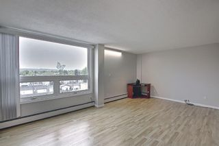Photo 9: 508 314 14 Street NW in Calgary: Hillhurst Apartment for sale : MLS®# A1117580