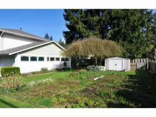Photo 9: 2205 KING ALBERT Avenue in Coquitlam: Central Coquitlam House for sale : MLS®# V1000895
