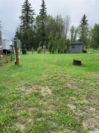 Photo 4: 101 Turtle Cres., Turtle Lake Lodge in Turtle Lake: Lot/Land for sale : MLS®# SK850282