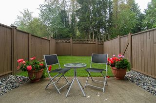 Photo 6: 23 22411 124th Street in Maple Ridge: Townhouse for sale : MLS®# V976782