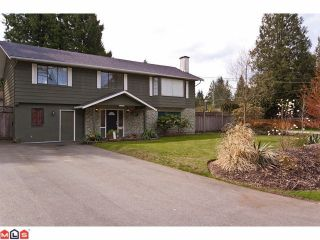 """Photo 1: 20712 39TH Avenue in Langley: Brookswood Langley House for sale in """"Brookswood"""" : MLS®# F1110432"""