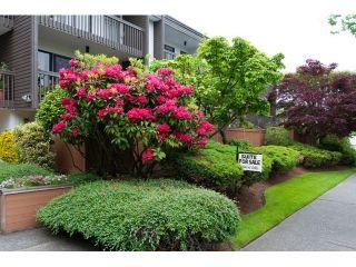 Photo 3: # 309 265 E 15TH AV in Vancouver: Mount Pleasant VE Condo for sale (Vancouver East)  : MLS®# V1012093