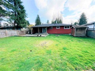 Photo 19: 11613 STEEVES Street in Maple Ridge: Southwest Maple Ridge House for sale : MLS®# R2556127