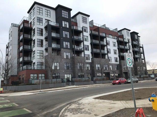 Main Photo: 401 10518 113 Street in Edmonton: Zone 08 Condo for sale : MLS®# E4237847