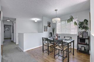Photo 9: 136 Abingdon Way NE in Calgary: Abbeydale Detached for sale : MLS®# A1097346