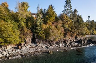 Photo 9: 8233 West Coast Rd in Sooke: Sk West Coast Rd House for sale : MLS®# 887298