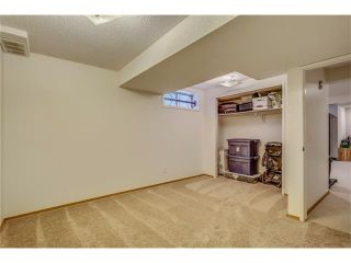 Photo 39: SOLD in 1 Day - Beautiful Strathcona Home By Steven Hill of Sotheby's International Realty