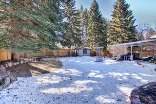 Photo 49: 8927 Baylor Crescent SW in Calgary: Bayview Detached for sale : MLS®# A1082509