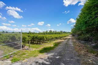 Photo 11: 21.44AC 240 STREET in Langley: Langley City Agri-Business for sale : MLS®# C8038637