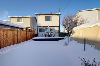 Photo 36: 148 Martinbrook Road NE in Calgary: Martindale Detached for sale : MLS®# A1069504
