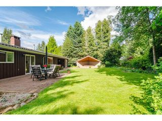 Photo 12: 4848 246A Street in Langley: Salmon River House for sale : MLS®# R2530745