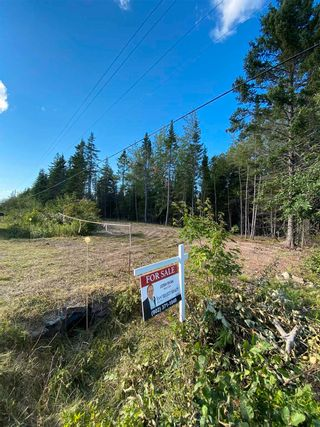 Photo 2: Lot Highway 4 False Bay Brook in River Bourgeois: 305-Richmond County / St. Peters & Area Vacant Land for sale (Highland Region)  : MLS®# 202123291