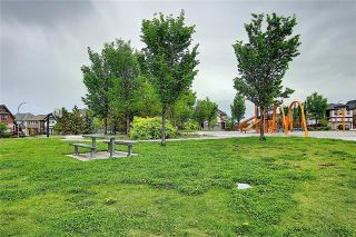Photo 43: 101 MAHOGANY Square SE in Calgary: Mahogany Detached for sale : MLS®# C4301329