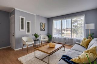 Photo 3: 644 RADCLIFFE Road SE in Calgary: Albert Park/Radisson Heights Detached for sale : MLS®# A1025632