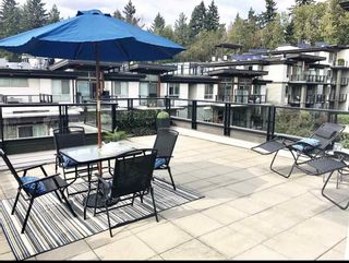 Photo 10: 401 7428 BYRNEPARK WALK in Burnaby: South Slope Condo for sale (Burnaby South)  : MLS®# R2517255