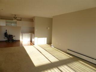 """Photo 6: 210 11806 88 Avenue in Delta: Annieville Condo for sale in """"Sungod Villa"""" (N. Delta)  : MLS®# R2568999"""