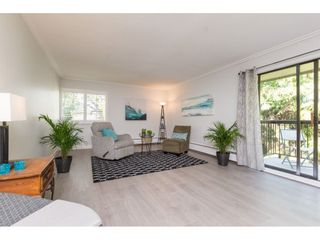 """Photo 20: 301 1355 FIR Street: White Rock Condo for sale in """"The Pauline"""" (South Surrey White Rock)  : MLS®# R2262403"""