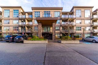 """Photo 1: 317 30525 CARDINAL Avenue in Abbotsford: Abbotsford West Condo for sale in """"Tamarind"""" : MLS®# R2520530"""