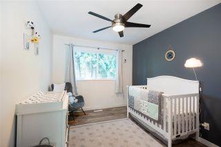 Photo 17: 20489 DALE Drive in Maple Ridge: Southwest Maple Ridge House for sale : MLS®# R2590609