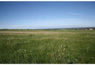 Photo 13: 4 4141 Twp Rd 340: Rural Mountain View County Land for sale : MLS®# C4123350
