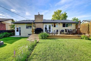 Photo 26: 155 HUNTFORD Road NE in Calgary: Huntington Hills Detached for sale : MLS®# A1016441