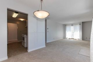"""Photo 8: 313 13771 72A Avenue in Surrey: East Newton Condo for sale in """"NEWTOWN PLAZA"""" : MLS®# R2287531"""