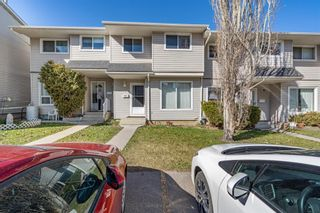 Main Photo: 1014 3235 56 Street NE in Calgary: Pineridge Row/Townhouse for sale : MLS®# A1093158