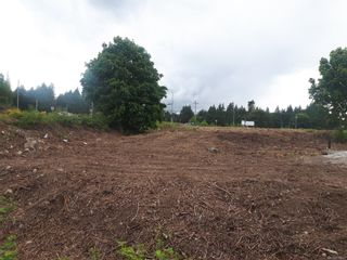 Photo 11: Proposed Lt1 Frayne Rd in Mill Bay: ML Mill Bay Unimproved Land for sale (Malahat & Area)  : MLS®# 876697