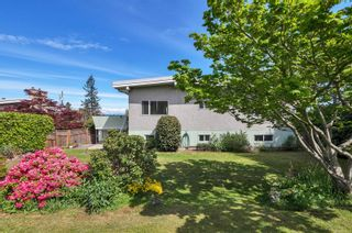 Photo 6: 232 McCarthy St in : CR Campbell River Central House for sale (Campbell River)  : MLS®# 874727