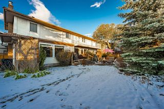 Photo 3: 27 Silvergrove Court NW in Calgary: Silver Springs Detached for sale : MLS®# A1065154