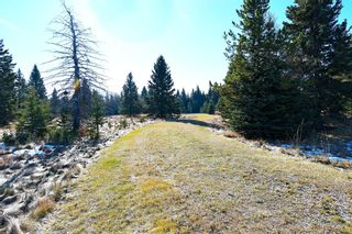 Photo 21: 20.02 Acres +/- NW of Cochrane in Rural Rocky View County: Rural Rocky View MD Land for sale : MLS®# A1065950