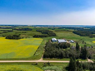 Photo 21: 461017A RR 262: Rural Wetaskiwin County House for sale : MLS®# E4255011