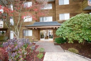 Photo 9: 104 11957 223 STREET in Maple Ridge: West Central Condo for sale : MLS®# R2323481