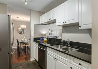 Photo 18: 304 545 18 Avenue SW in Calgary: Cliff Bungalow Apartment for sale : MLS®# A1129205
