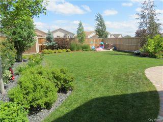 Photo 14: 487 Shorehill Drive in WINNIPEG: Windsor Park / Southdale / Island Lakes Residential for sale (South East Winnipeg)  : MLS®# 1315327