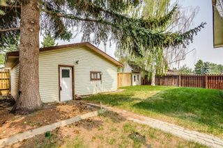 Photo 24: 5112 Whitehorn Drive NE in Calgary: Whitehorn Detached for sale : MLS®# A1135680
