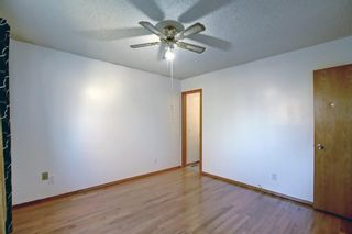Photo 17: 317 Big Springs Court SE: Airdrie Detached for sale : MLS®# A1152002