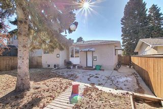 Photo 42: 56 Langton Drive SW in Calgary: North Glenmore Park Detached for sale : MLS®# A1081940