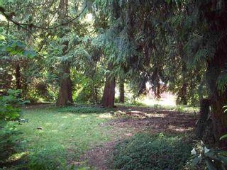 Photo 1: 66563 SUMMER ROAD in Hope: Hope Kawkawa Lake Land for sale : MLS®# R2568024