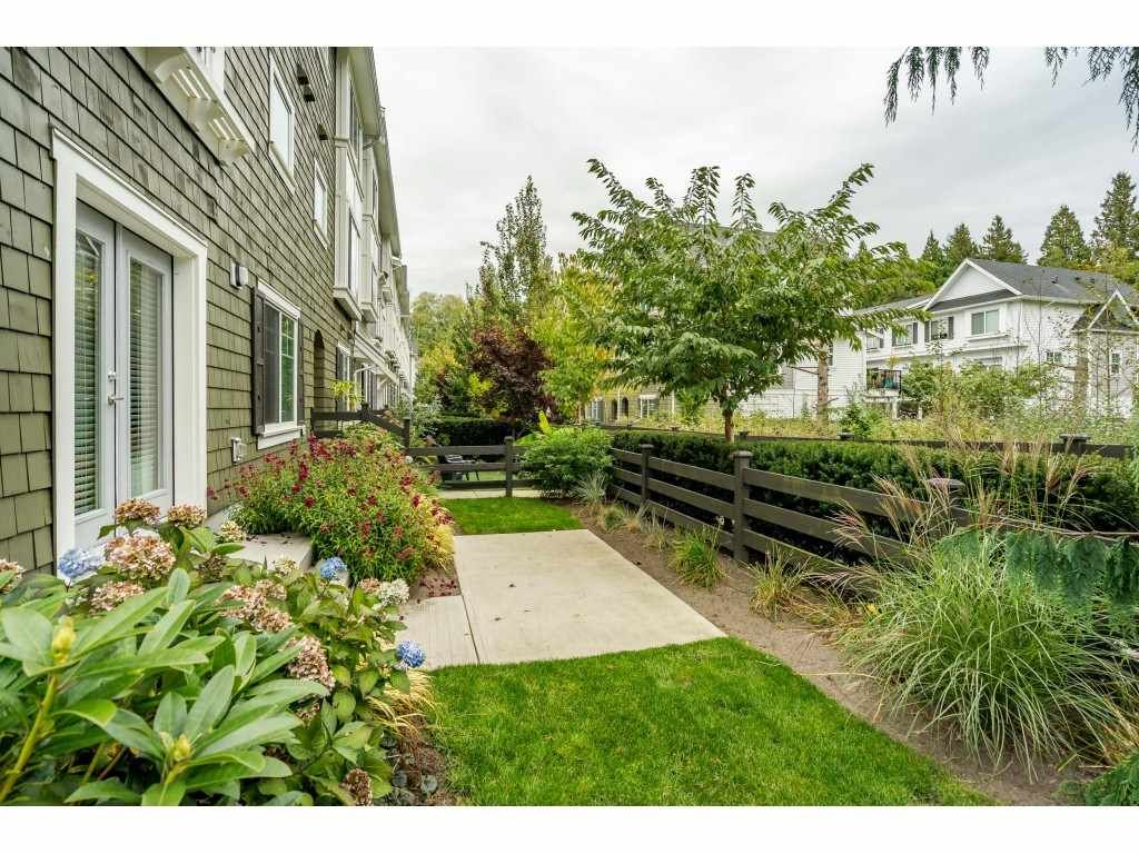 """Main Photo: 5 288 171 Street in Surrey: Pacific Douglas Townhouse for sale in """"Summerfield"""" (South Surrey White Rock)  : MLS®# R2508746"""