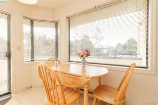 Photo 11: 211 3900 Shelbourne St in VICTORIA: SE Cedar Hill Condo for sale (Saanich East)  : MLS®# 795183