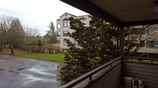 """Photo 5: 115 5294 204 Street in Langley: Langley City Condo for sale in """"WATERS EDGE"""" : MLS®# R2539914"""