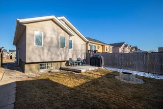 Photo 31: 123 Redonda Street in Winnipeg: Canterbury Park Residential for sale (3M)  : MLS®# 202107335