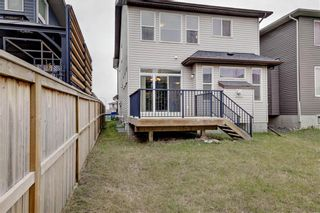 Photo 34: 18 EVANSFIELD Park NW in Calgary: Evanston Detached for sale : MLS®# C4295619
