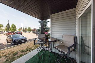Photo 33: 144 1196 HYNDMAN Road in Edmonton: Zone 35 Condo for sale : MLS®# E4255292
