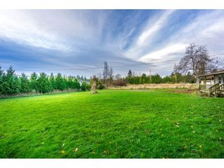 """Photo 20: 1224 240 Street in Langley: Otter District House for sale in """"South Langley"""" : MLS®# R2122822"""