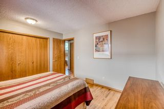 Photo 25: 64 Hawkford Crescent NW in Calgary: Hawkwood Detached for sale : MLS®# A1144799