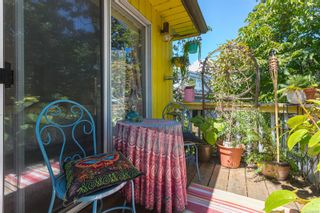 Photo 26: 3835 Synod Rd in : SE Cedar Hill House for sale (Saanich East)  : MLS®# 882676